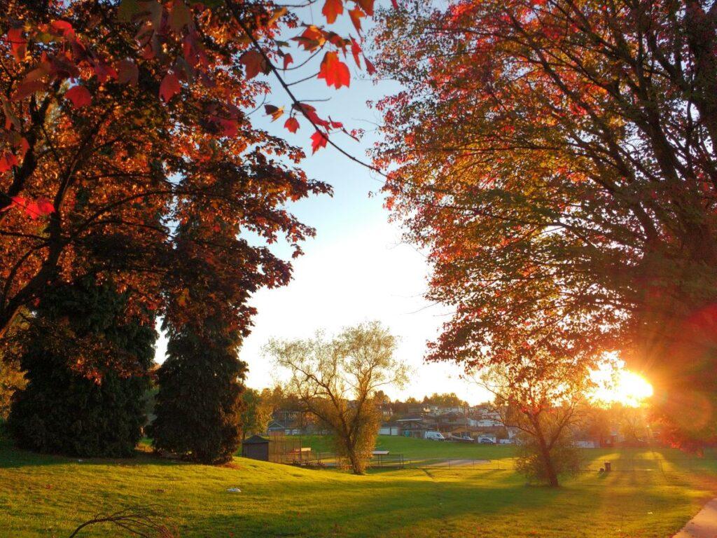 Autumn sunset at Falaise Park