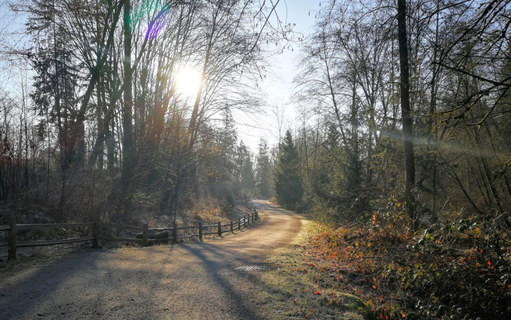 Brunette-Burnaby Lake Greenway