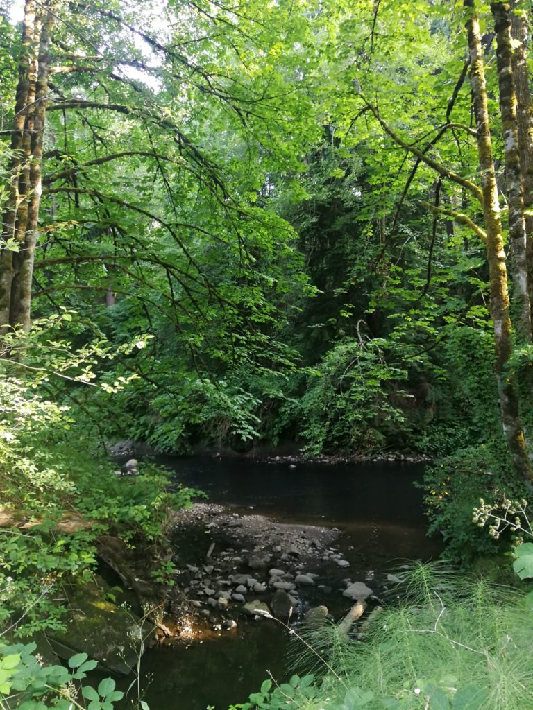 Brunette river