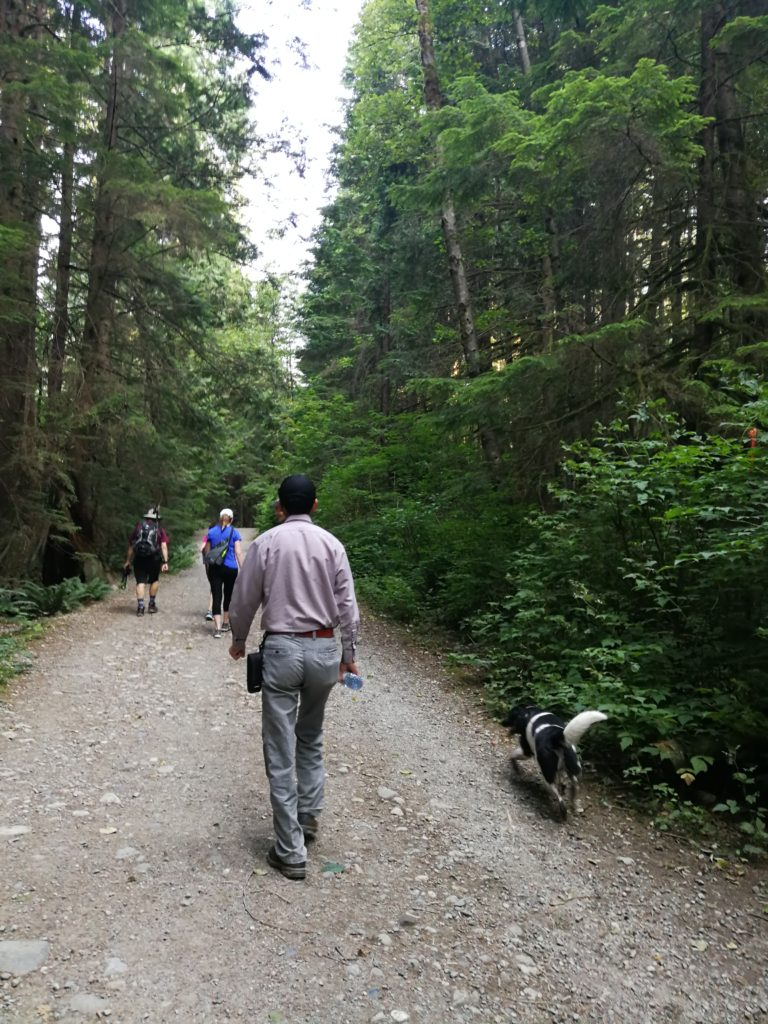Hiking Lynn Headwater Connector Trail