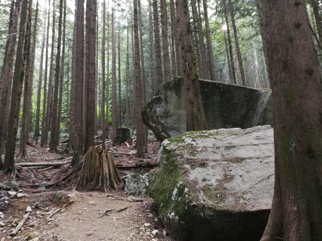 Boulders on Lynn Headwaters Trail