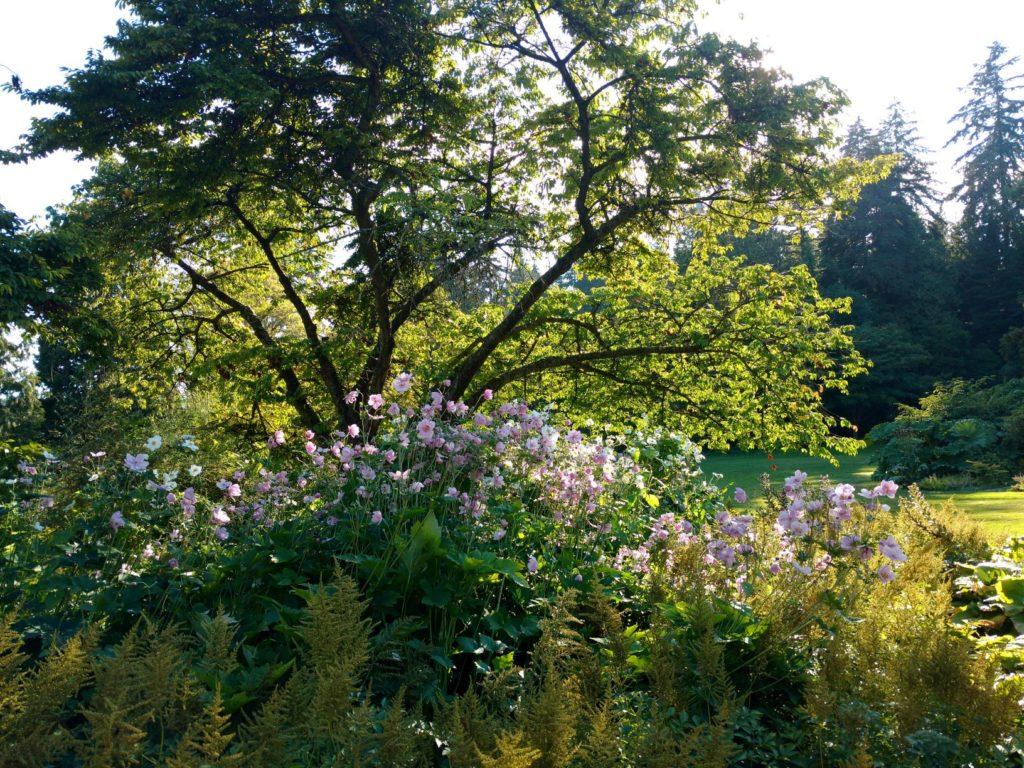 Stanley Park Shakespeare Garden