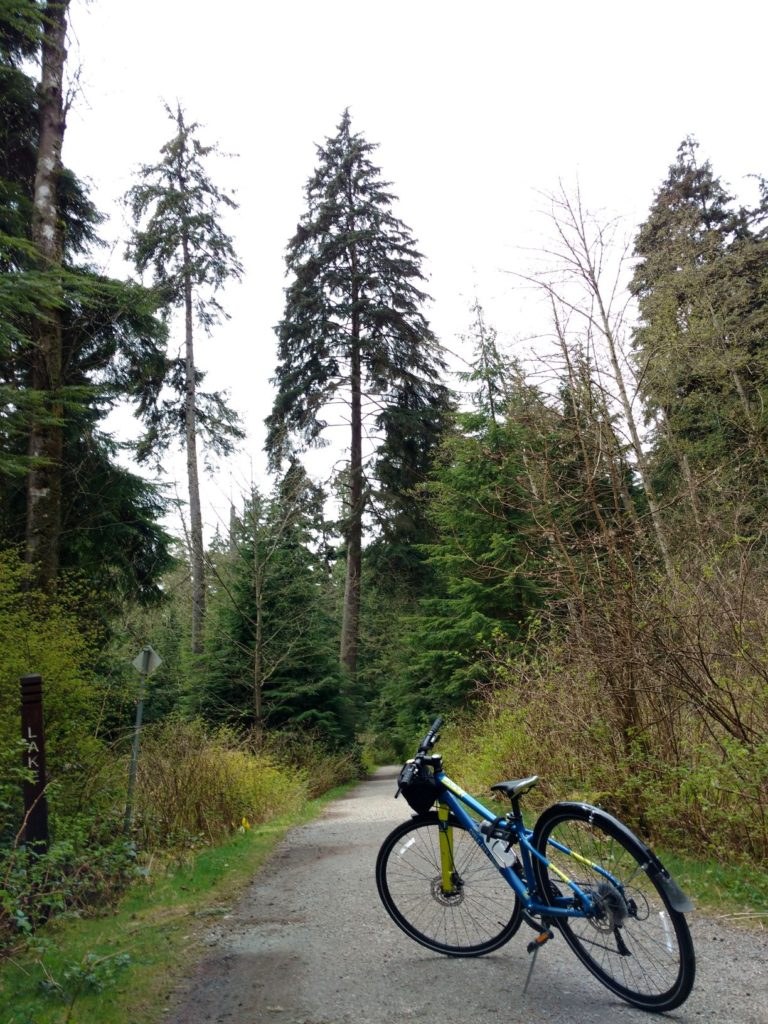 Beaver Lake Trail Stanley Park