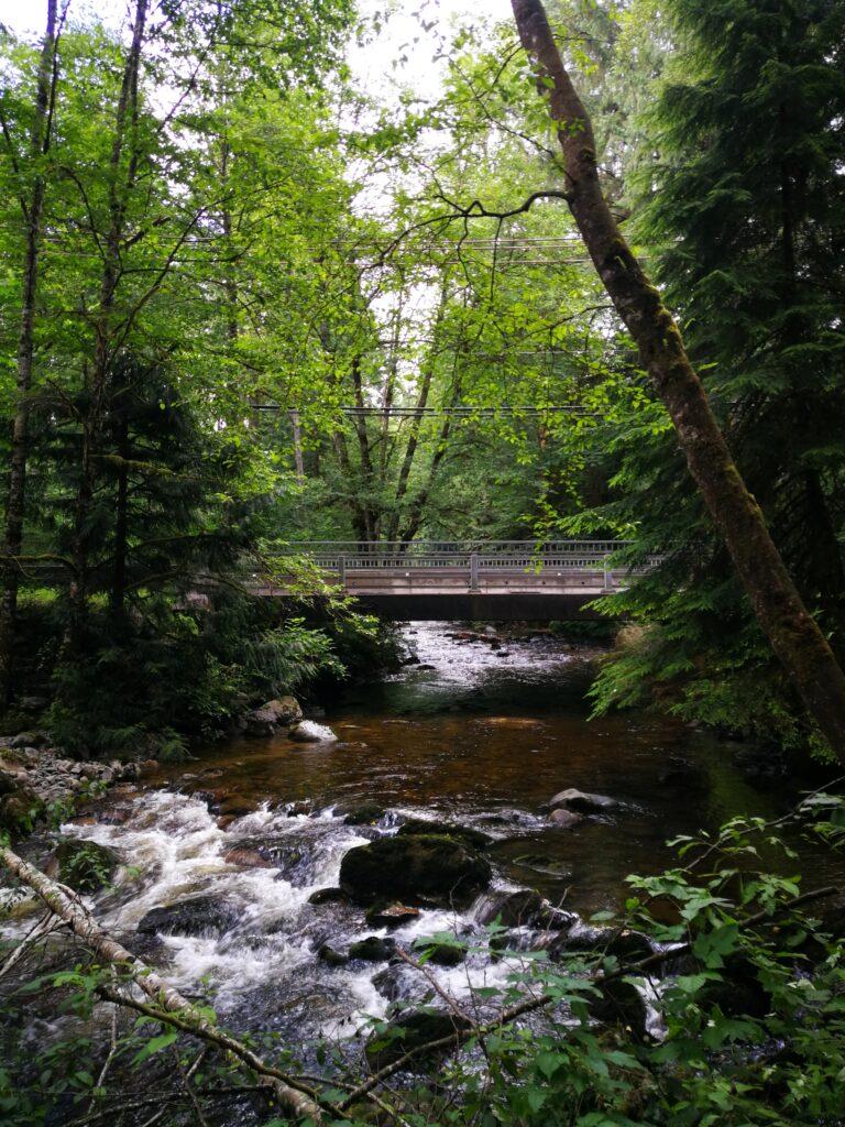 road bridge over Kanaka Creek at the entrance