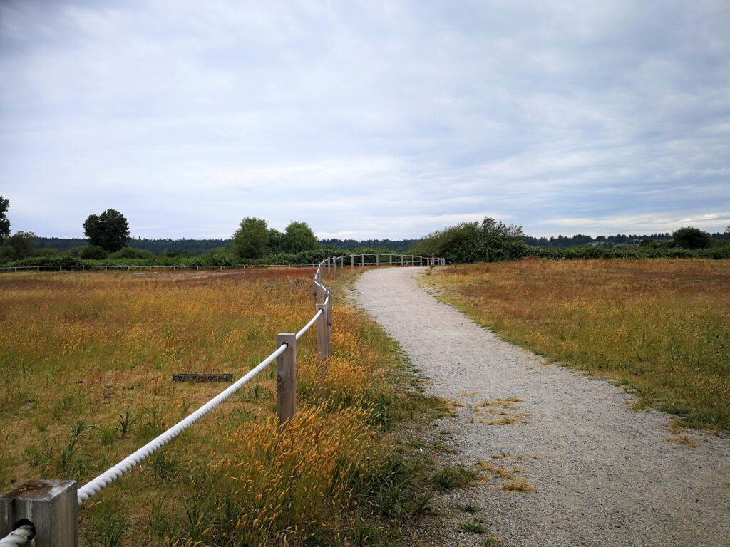 Trail along ecology protection area Boundary Bay