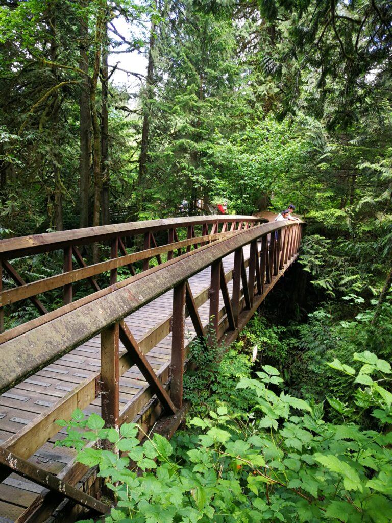 Wooden bridge over Kanaka Creek near cliff falls