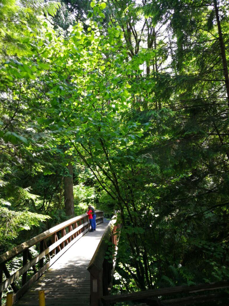 Bridge with people over Kanaka Creek