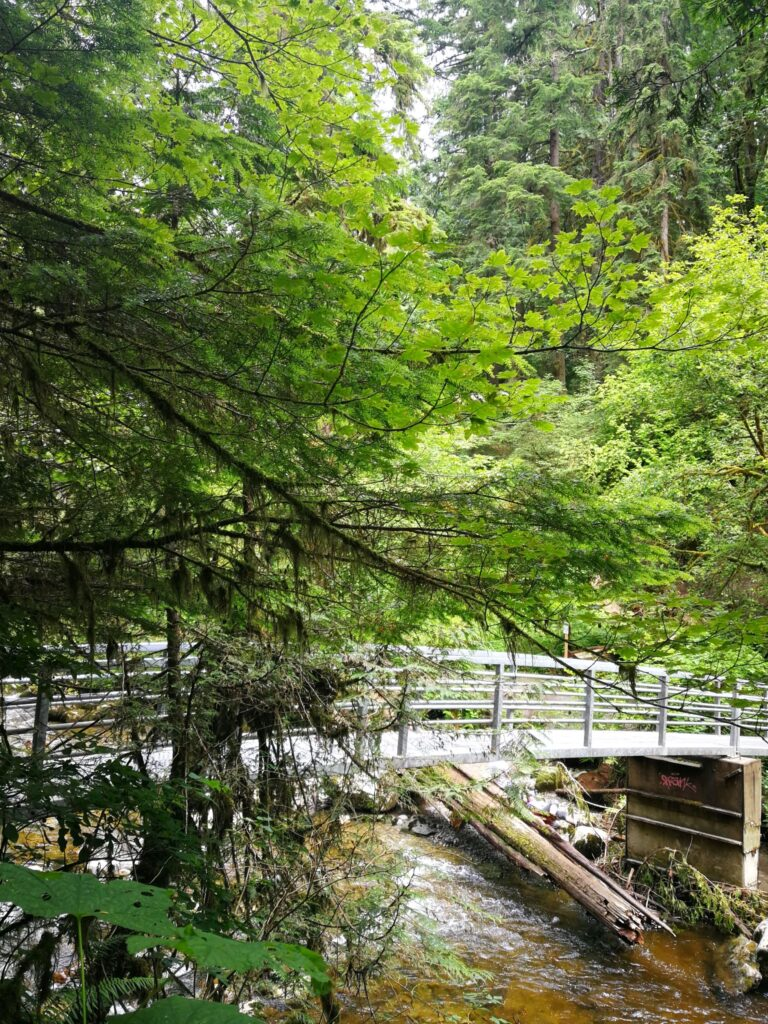 low bridge over the shallow creek