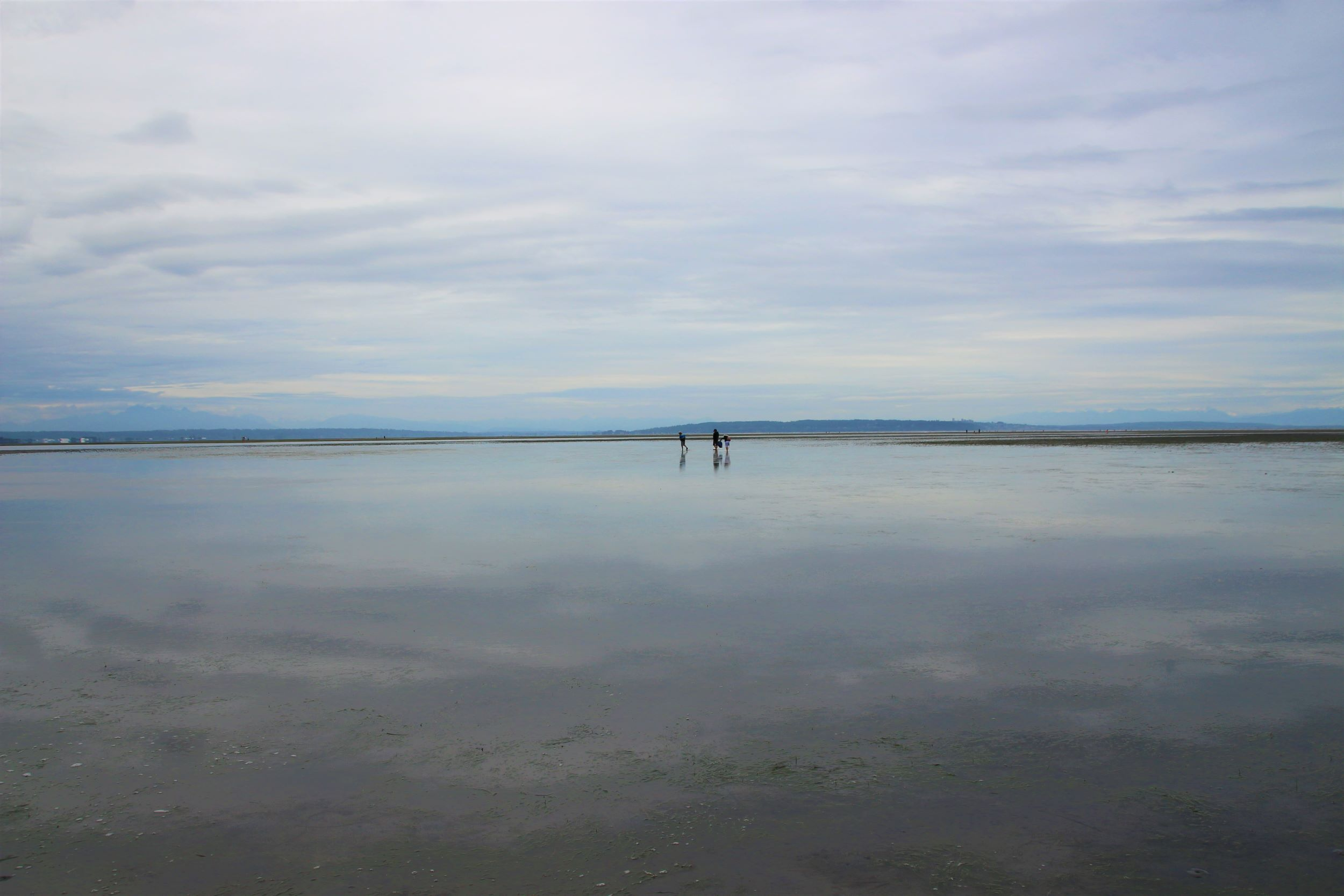 Boundary Bay clamming