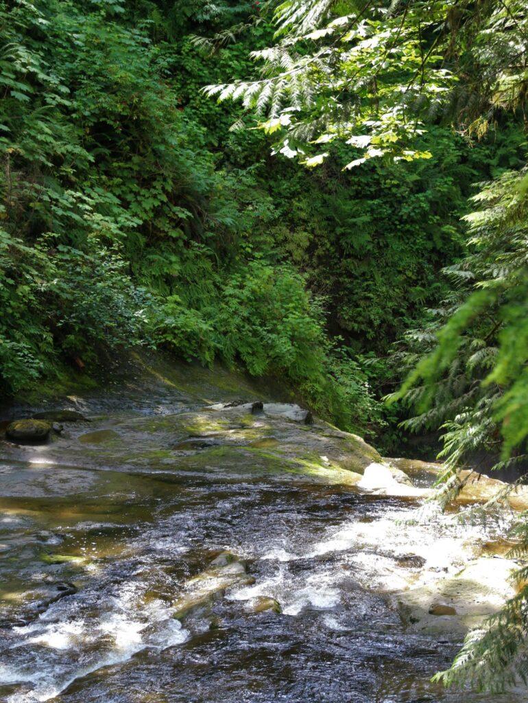 Kanaka Creek before Cliff Falls