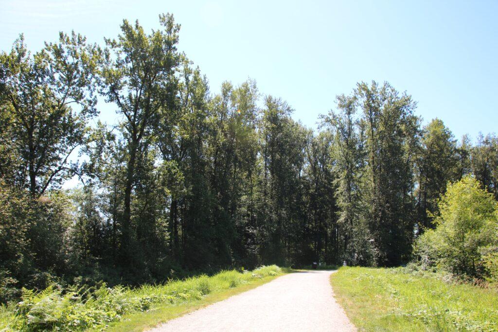 Trail leading to Kanaka Creek Riverfront