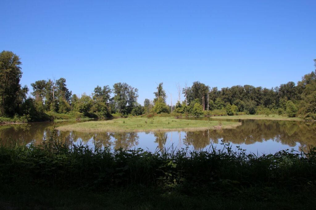 Kanaka Creek Oxbow
