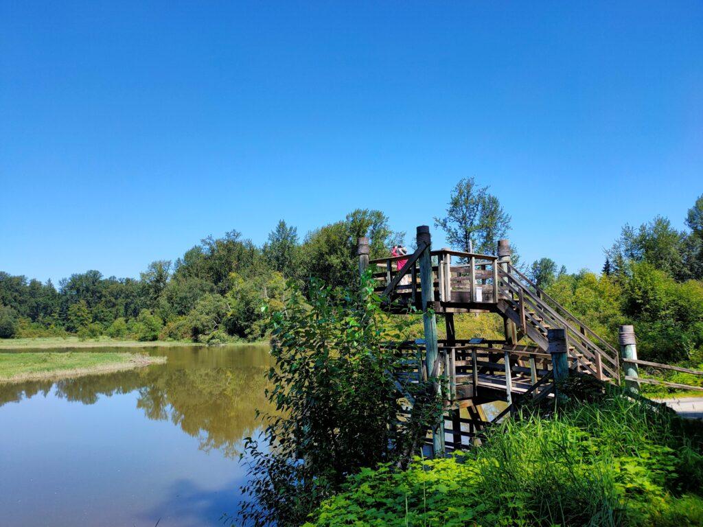 Bird Tower at Kanaka Creek