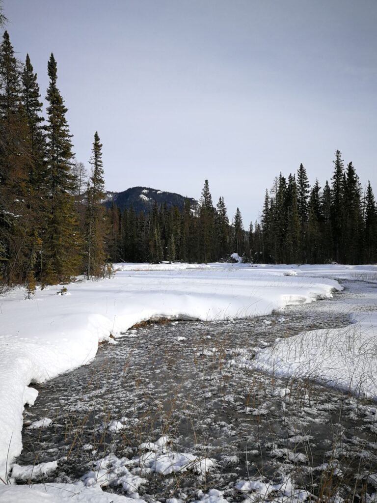 River remains not frozen because of hot springs
