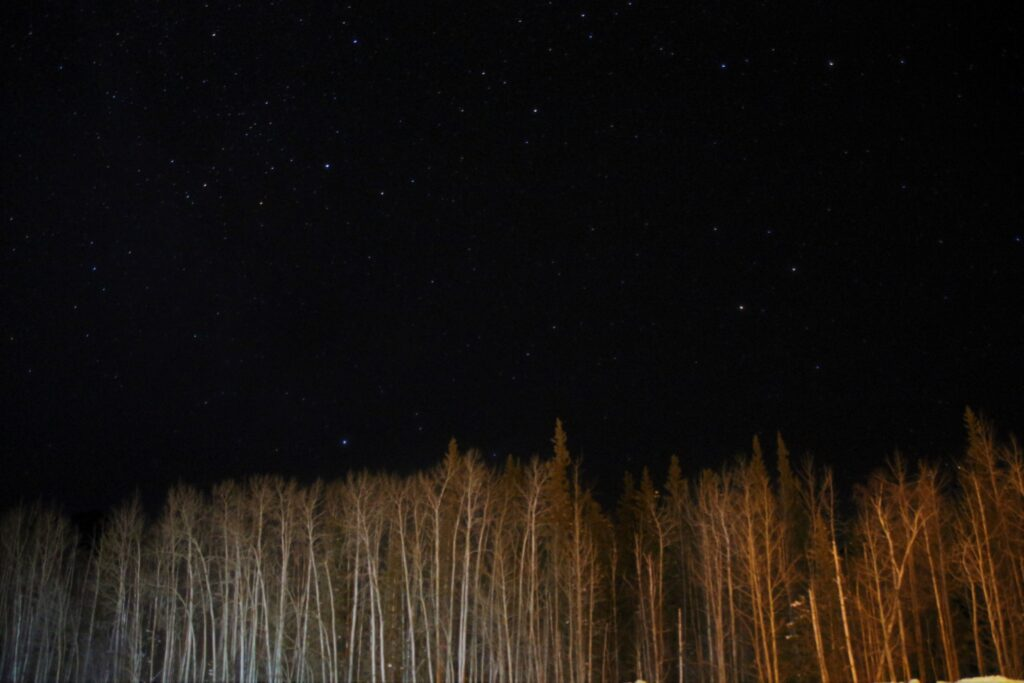 Starry night sky at Liard Hot Springs Lodge