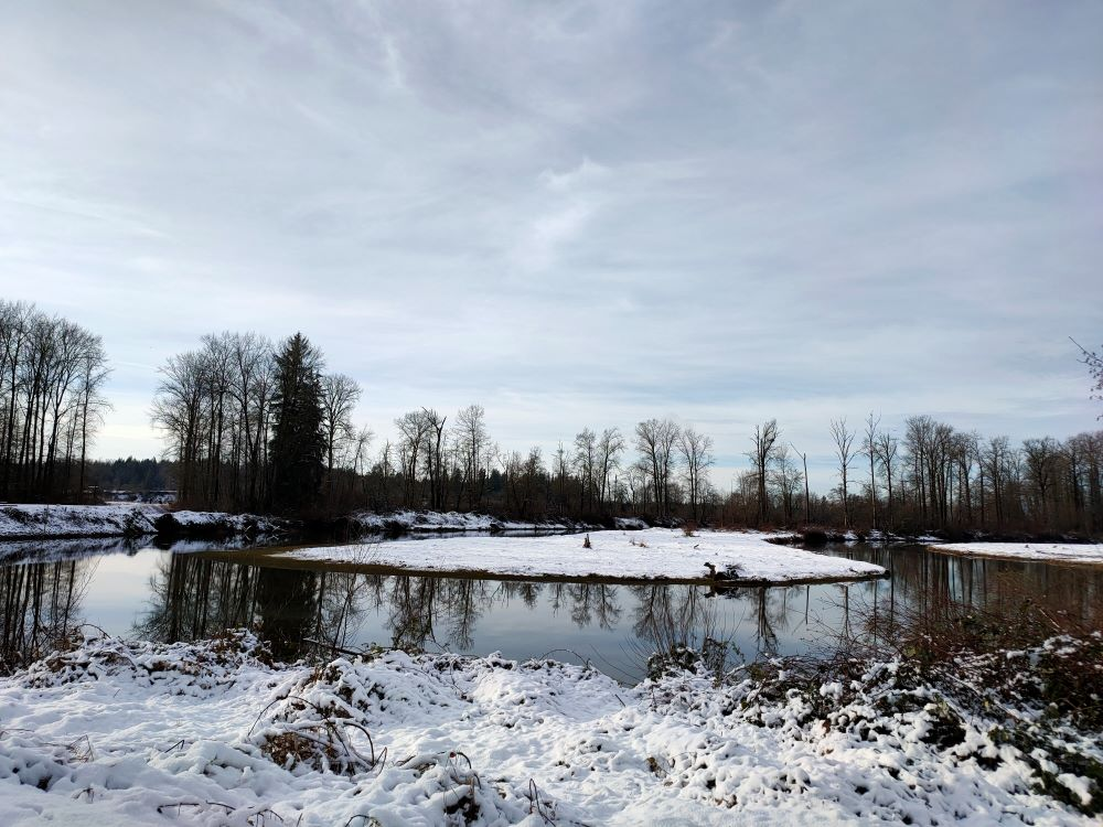 Kanaka Creek's oxbow in winter