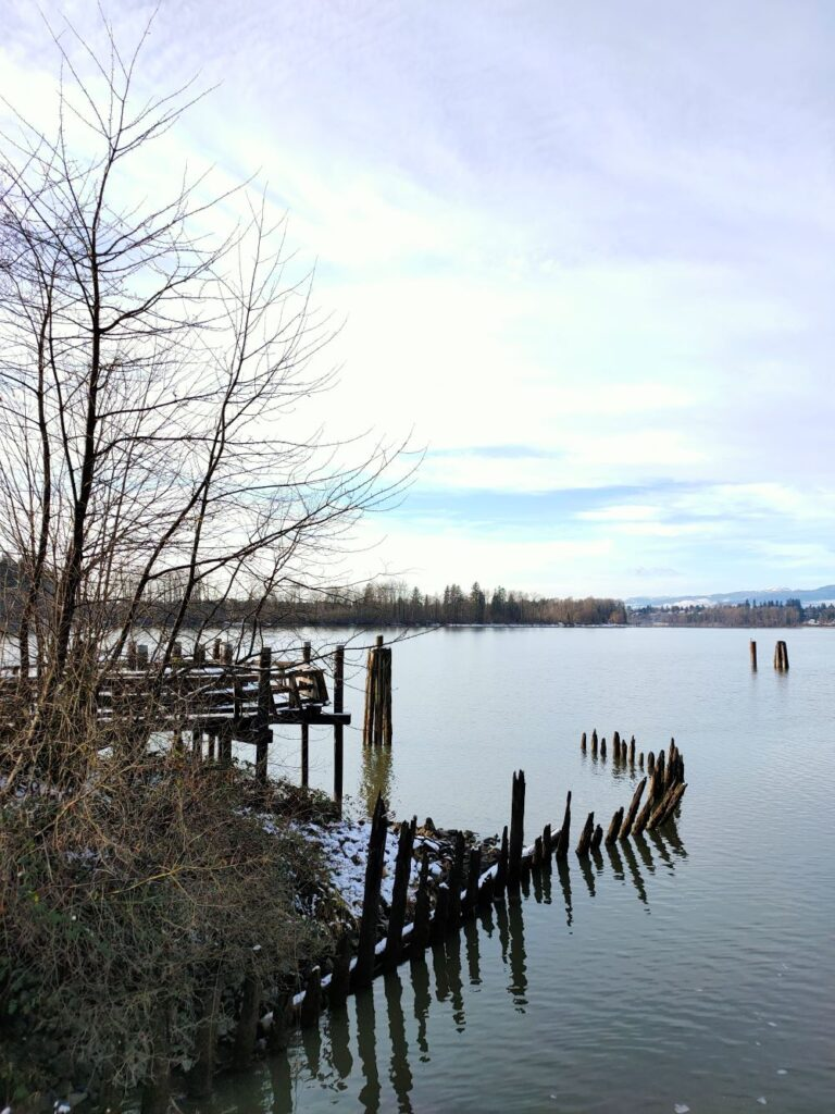 The confluence of Kanaka Creek and Fraser River with the end of boardwalk