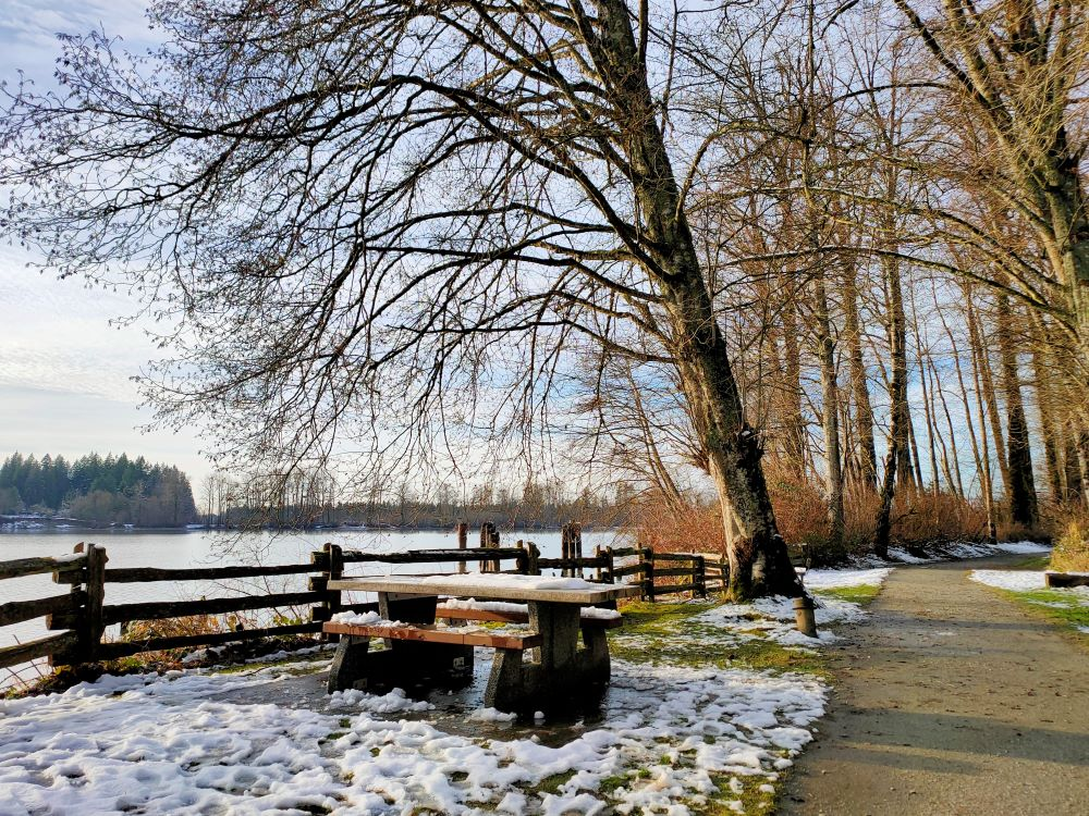 picnic area by the river