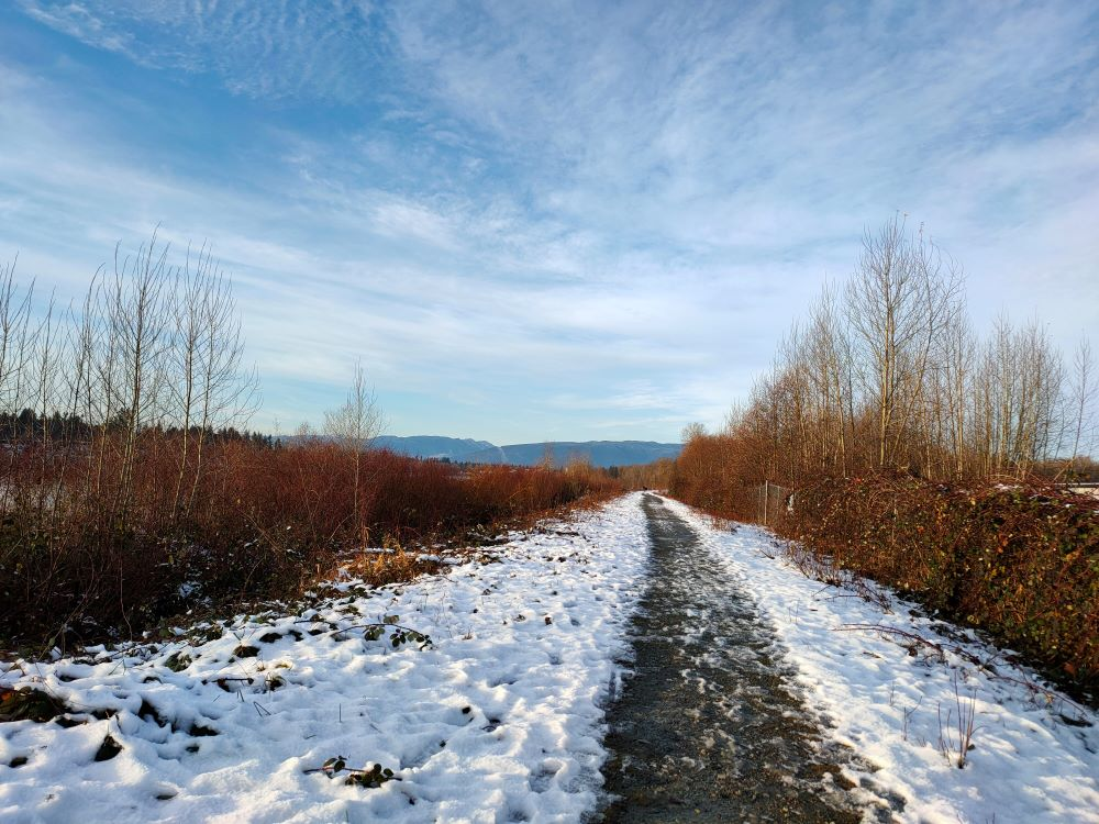 The Dyke Trail covered in snow
