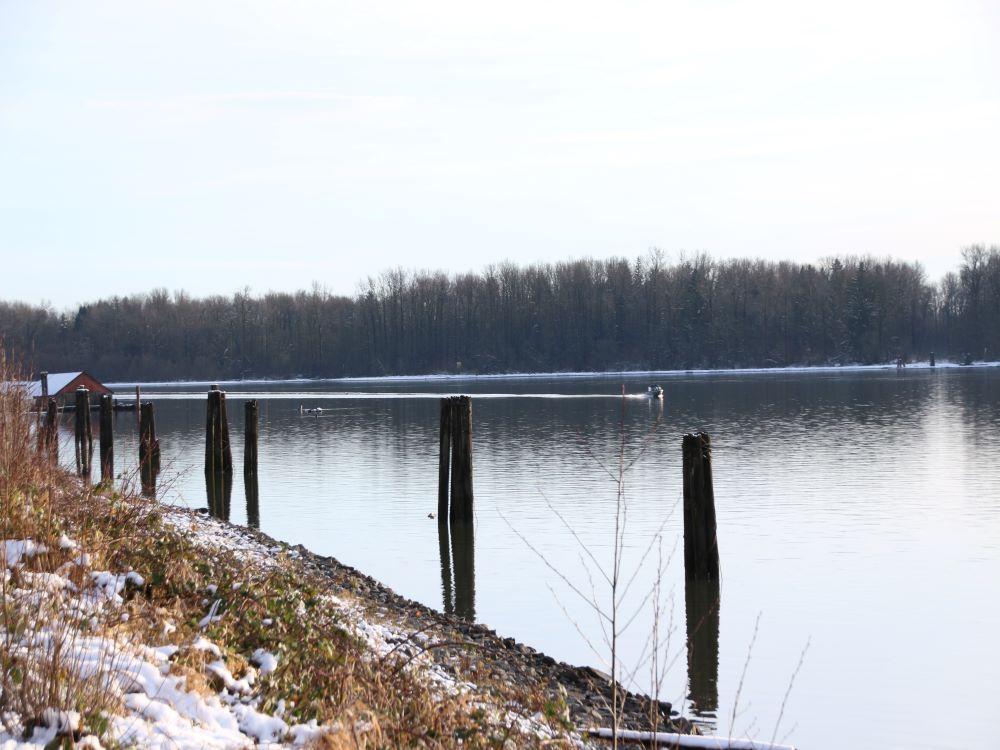 McMillan Island across Fraser River