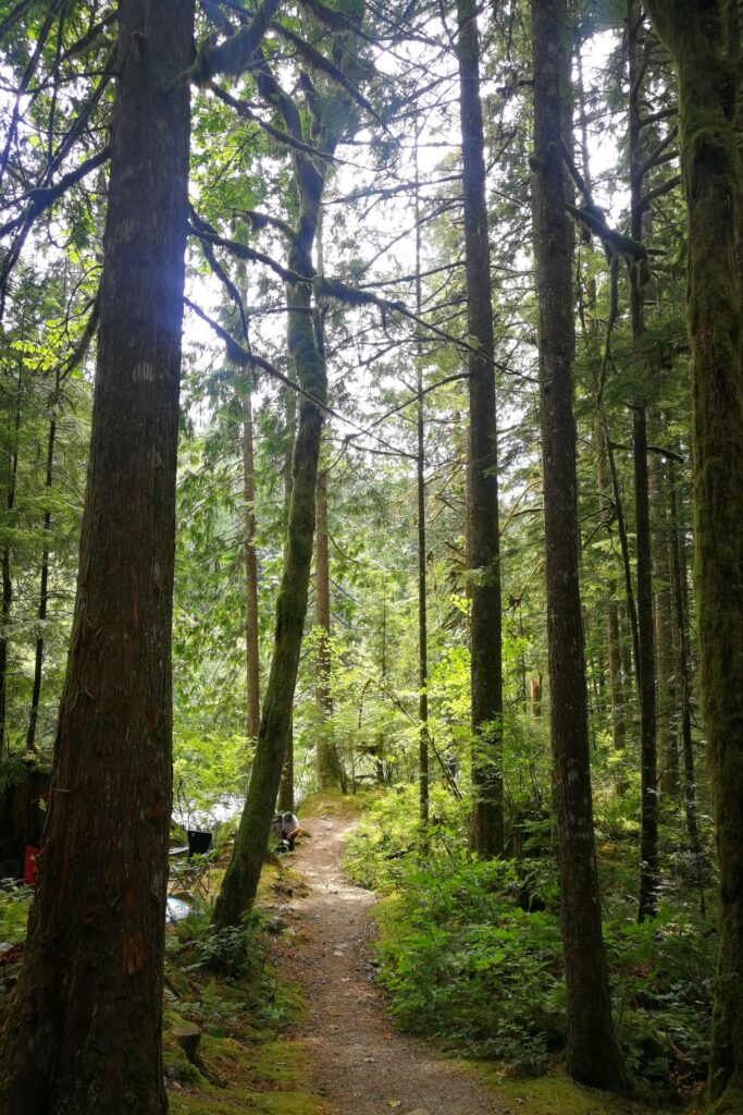 Cascade Falls picnic area