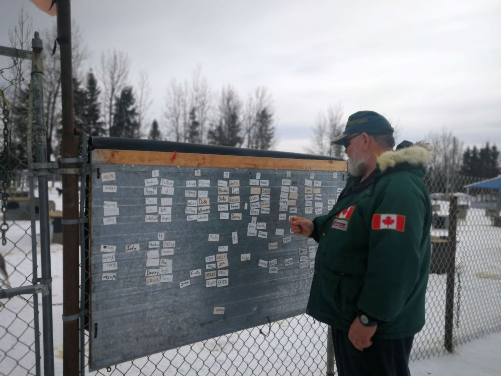 Terry Streeper's sled dogs training schedule