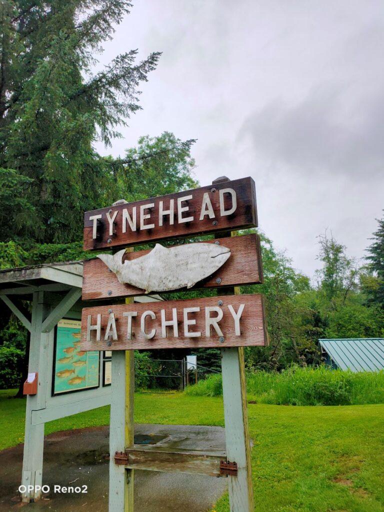 Tynehead Hatchery signage