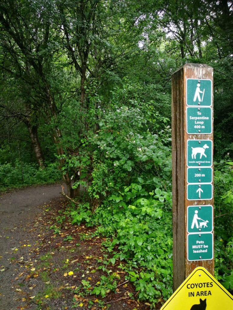 Birch Grove Trailhead at Tynehead