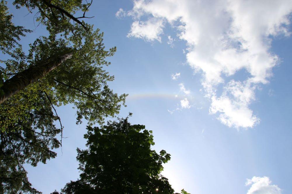 Glaring Sun and rainbow on the sky