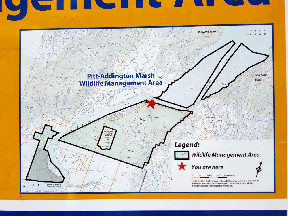 Pitt-Addington Marsh Wildlife Management Area map