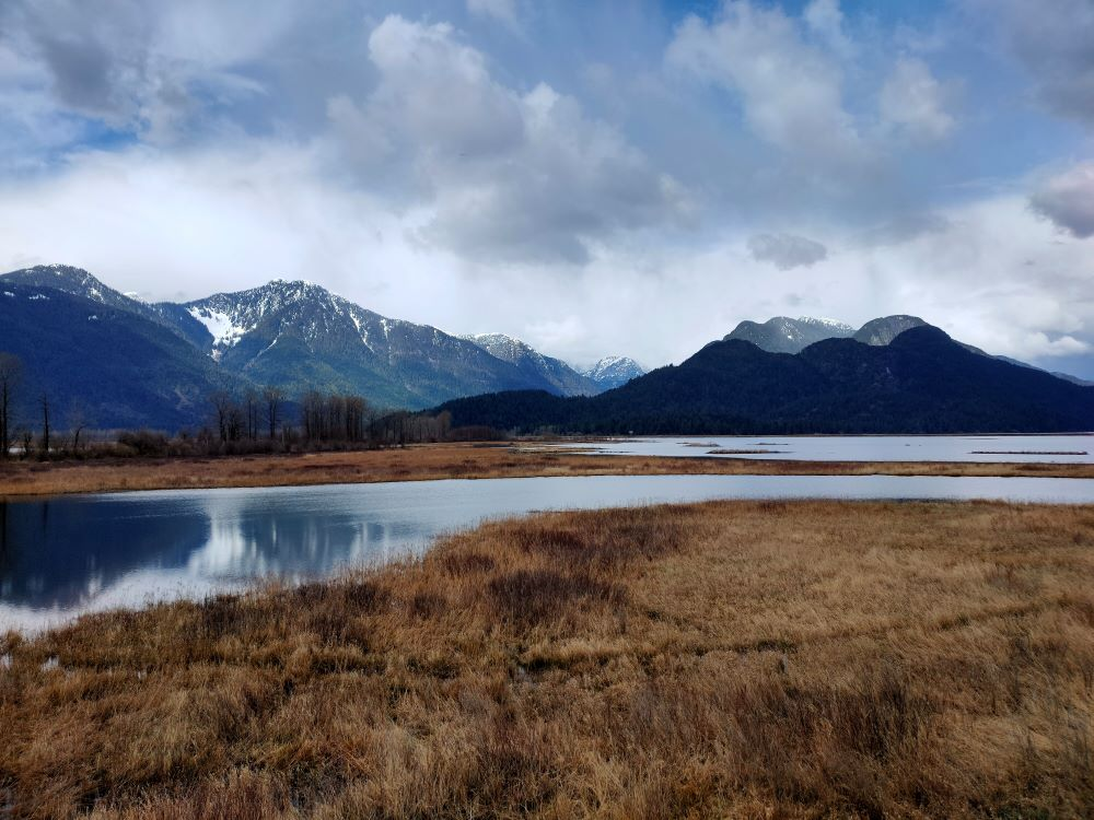 marshland view with calmed reflection of the mountains to the north