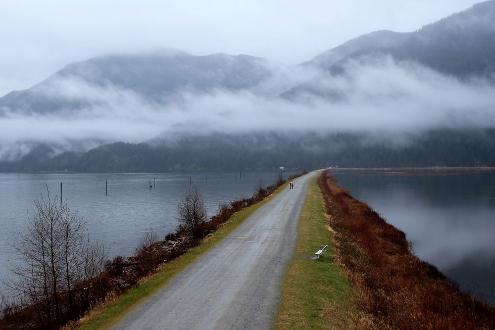 The dyke trail by Pitt Lake