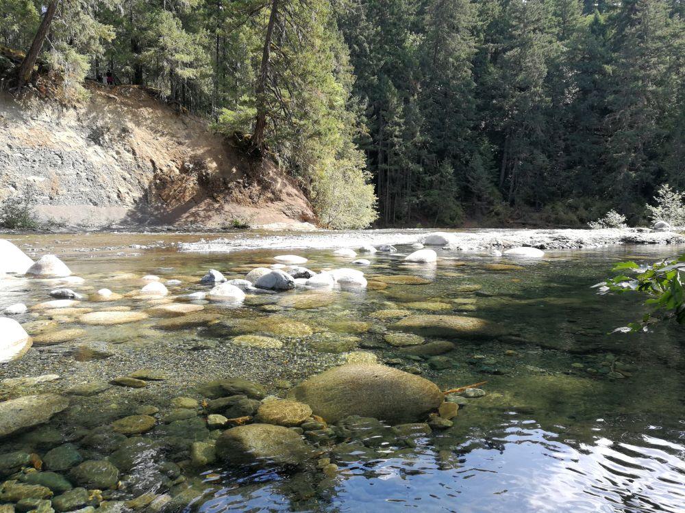 Upstream calm of Englishman River