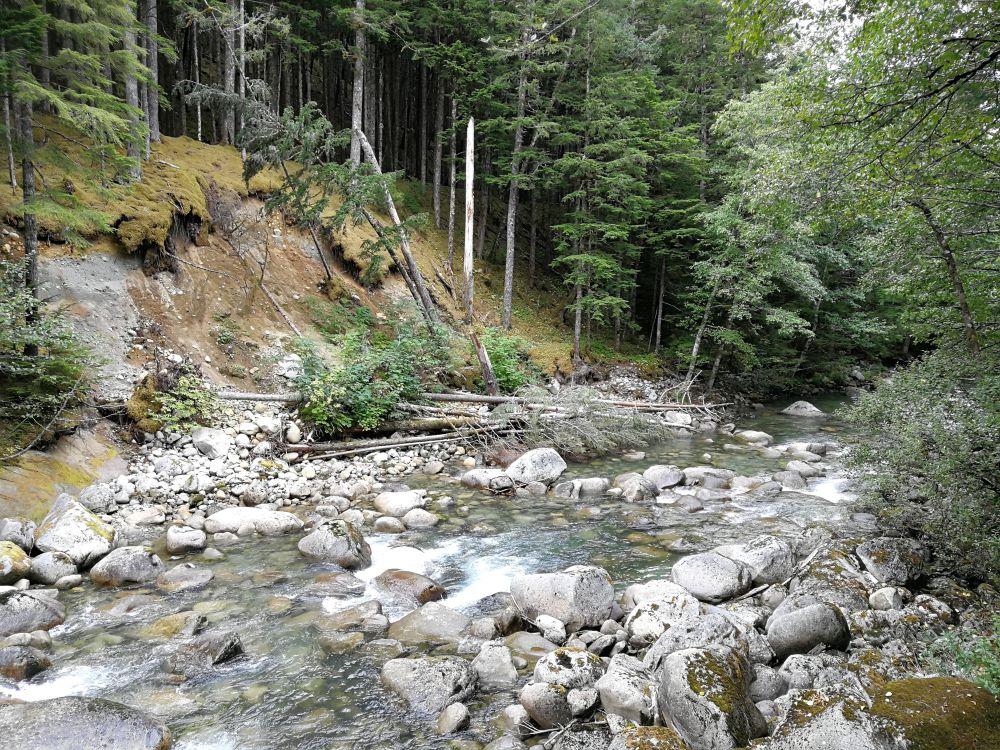 Clayton Falls running into creek