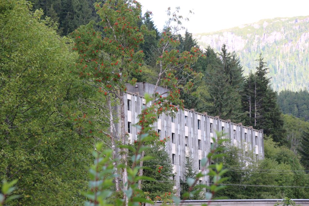 old pulp mill building